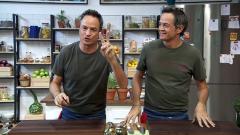 Torres en la cocina - Mejillones bouchon y col rellena de pies de cerdo