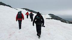 Científicos españoles lideran la primera expedición antártica libre de emisiones