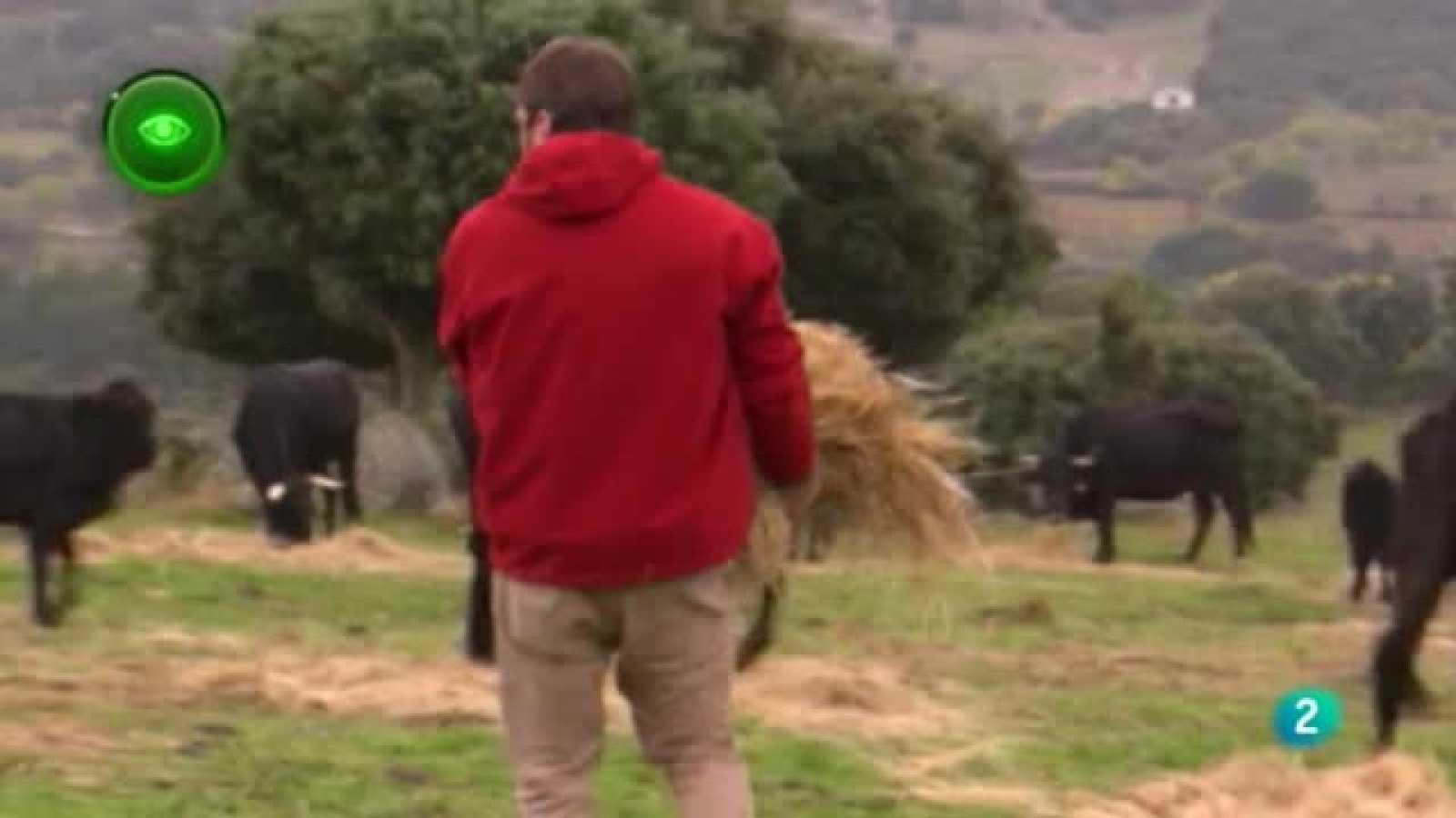 En primer plano, Agricultura ecológica
