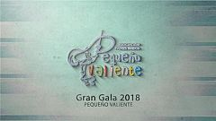 Gala Pequeño Valiente - 24/11/2018