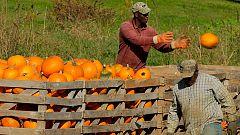 Grandes documentales - Maine. América al natural