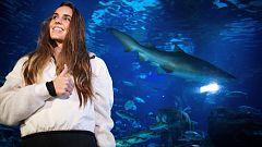 Ona Carbonell nada entre tiburones por una buena causa