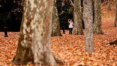 Adiós a un otoño cálido y húmedo