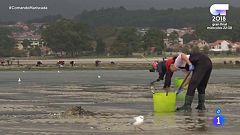 Comando Actualidad - De Mariscada - Furtivismo en Galicia
