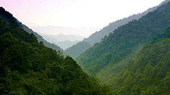 Otros documentales - Historias de las Montañas de la Bruma