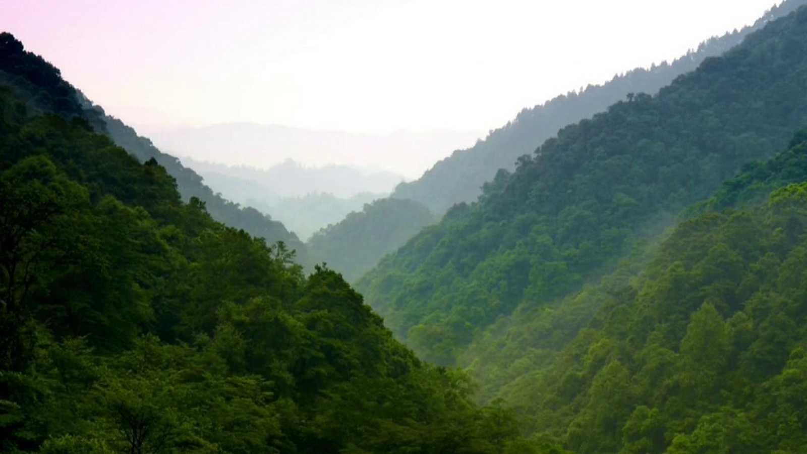 Otros documentales - Historias de las Montañas de la Bruma - ver ahora