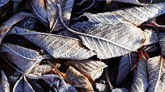 Temperaturas bajas en interior con heladas y viento fuerte en noreste
