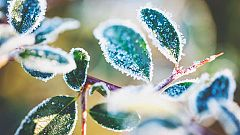 Temperaturas significativamente bajas en amplias zonas del interior peninsular