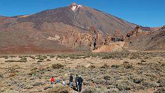 Un terremoto de pequeña magnitud se registra en la isla de Tenerife
