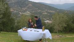 Aquí la tierra - Del olivo a la mesa, todo importa