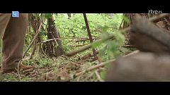 Lo Siguiente - Un bosque contra la pobreza
