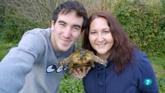 La meva mascota i jo - Marjo, la tortuga del jardí