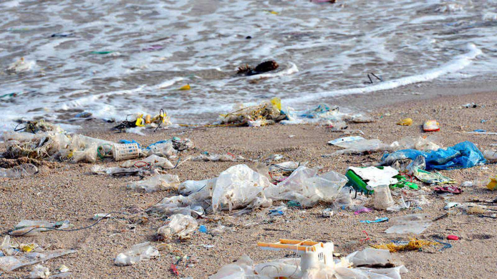 En el año 2050, de seguir a este ritmo, habrá más plástico en el mar que organismos vivos