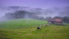 Cielo despejado, salvo en Galicia donde lloverá de forma persistente