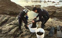 Repor - Una huerta bajo el mar - Avance