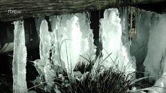 Palabra Voyeur - Nostalgia de la muerte. Xavier Villaurrutia - 20/02/18