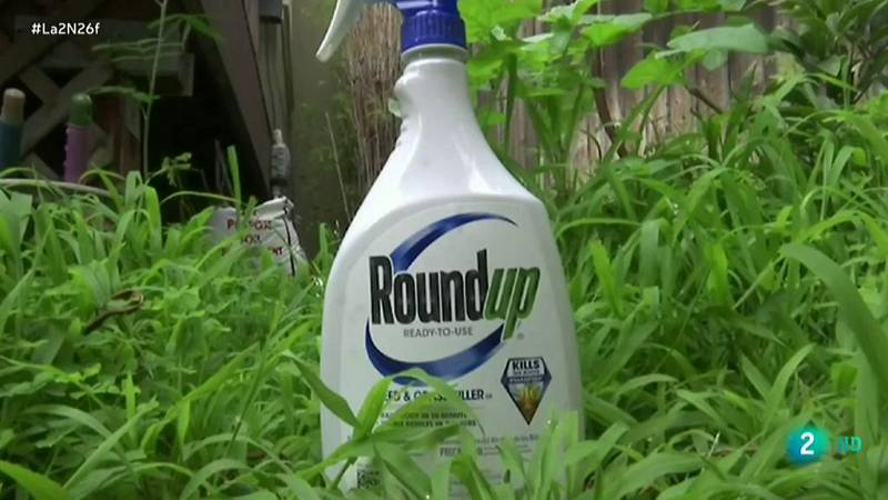 Monsanto otra vez en los tribunales