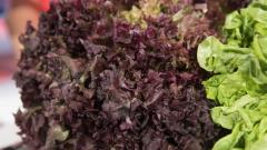 Cómo hacer más sanas tus ensaladas
