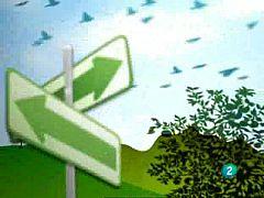 Actívate - El reto del bienestar - 15/05/09