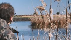 Aquí la tierra - Laguna de Navaseca, un paraíso para las aves