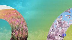 El tiempo en Castilla-La Mancha - 22/03/19