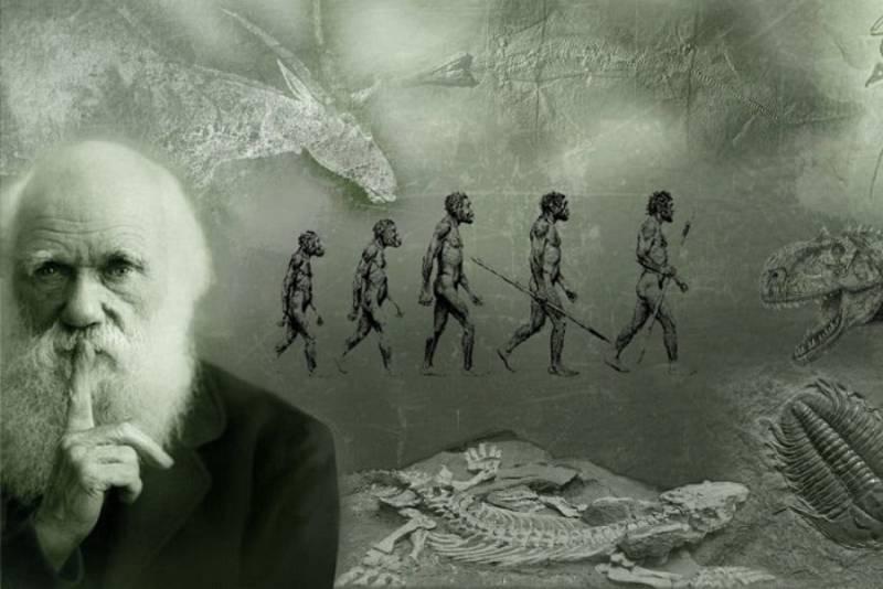 Órbita Laika - Curiosidades científicas - De pájaros a humanos: Charles Darwin.