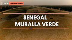 ¿Conoces la gran Muralla Verde de Senegal?