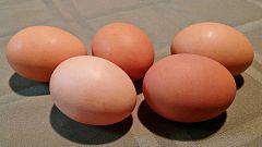 La Mañana - Huevos de sabores