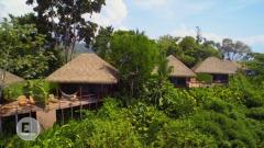 Otros documentales - Construcciones ecológicas: En el corazón de la selva