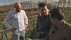 Aquí la tierra - Cebolletas en Aranjuez