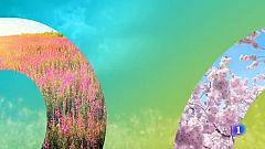 El tiempo en Cantabria - 22/04/19