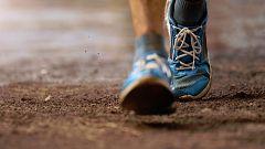 Un estudio revela que los beneficios cognitivos del ejercicio físico se heredan