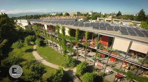 Construcciones ecológicas: Construir juntos