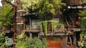 Construcciones ecológicas: Naturaleza urbana