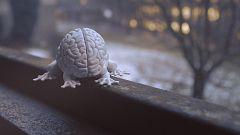La noche temática - El poder del cerebro - Avance