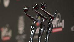 Todo listo para la entrega de los Premios Platino del cine iberoamericano