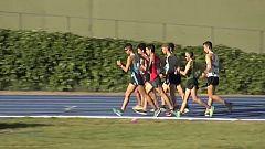 Atletismo - Campeonato de España de Clubes. División de Honor Masculina