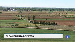 Castilla y León en 1' - 15/05/19