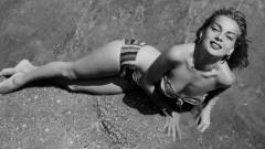 Otros documentales - Sexo, maracas y chihuahuas