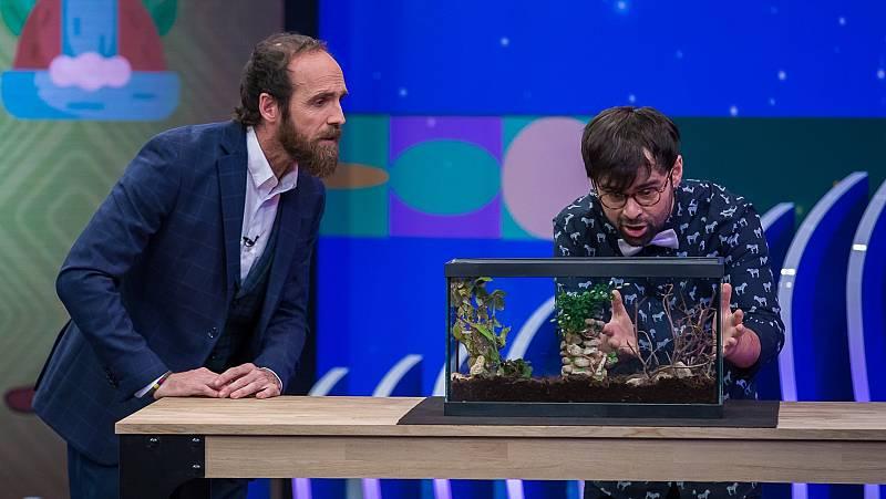 Órbita Laika - Biología con Ricardo Moure - Camuflaje animal