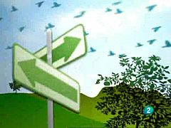 Actívate - El reto del bienestar - 12/06/09
