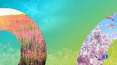 El tiempo en Cantabria - 11/06/19