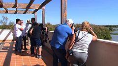 Zoom Tendencias - Huelva, subidón de esencia y gastronomía