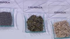 Las propiedades de las semillas