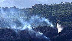 Arden 2.500 hectáreas en un incendio forestal en la ribera del Ebro