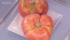 El tomate, alimento estrella del verano