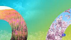 El tiempo en Galicia - 09/07/19