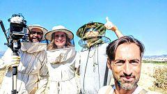 Aquí la tierra - ¡Al rescate de las abejas!