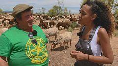 Aquí la tierra - La experiencia de un pastor en un libro