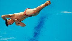 Mundial de Natación de Gwangju - Saltos: 1Mt. Masculino Final